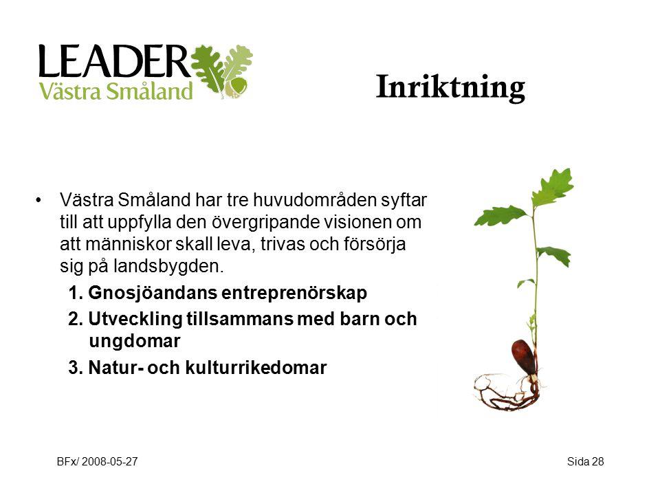 BFx/ 2008-05-27Sida 28 Inriktning Västra Småland har tre huvudområden syftar till att uppfylla den övergripande visionen om att människor skall leva, trivas och försörja sig på landsbygden.