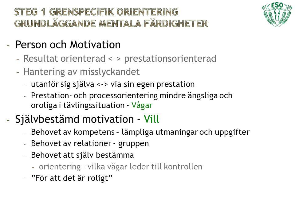 - Person och Motivation - Resultat orienterad prestationsorienterad - Hantering av misslyckandet - utanför sig själva via sin egen prestation - Presta