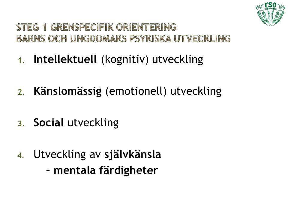 1. Intellektuell (kognitiv) utveckling 2. Känslomässig (emotionell) utveckling 3. Social utveckling 4. Utveckling av självkänsla – mentala färdigheter