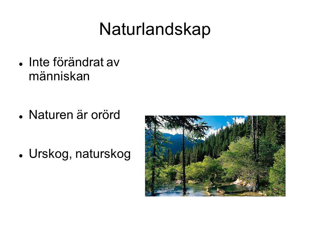 Naturlandskap Inte förändrat av människan Naturen är orörd Urskog, naturskog