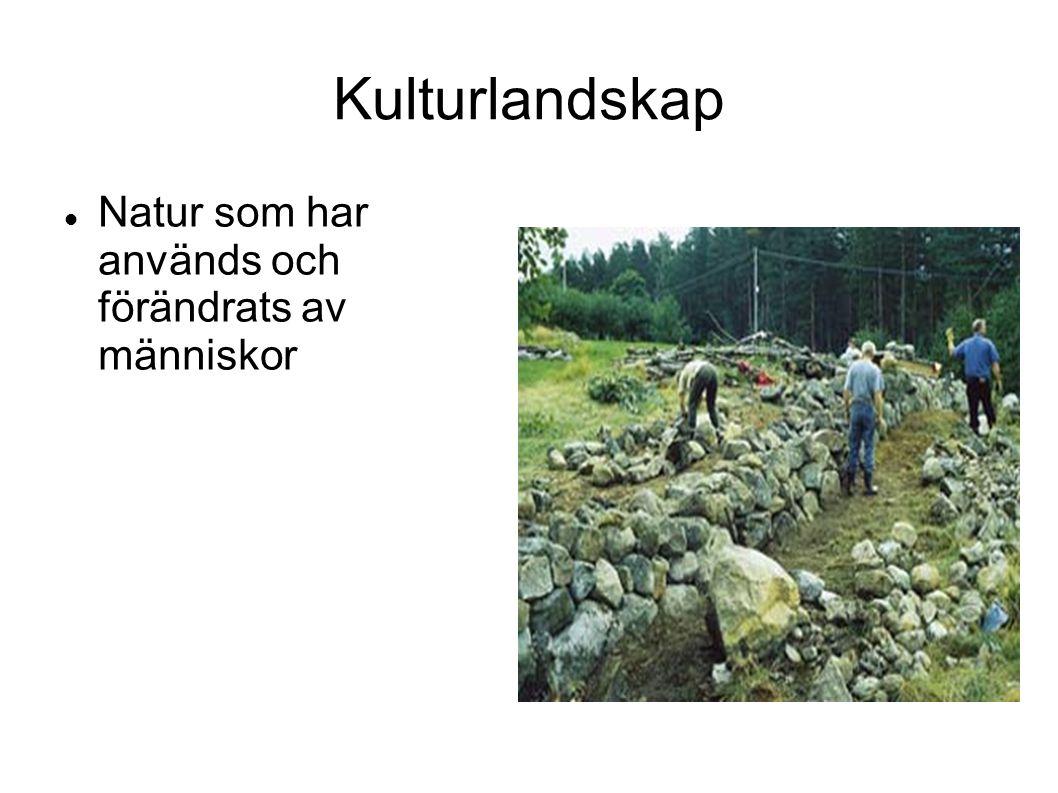 Kulturlandskap Natur som har används och förändrats av människor