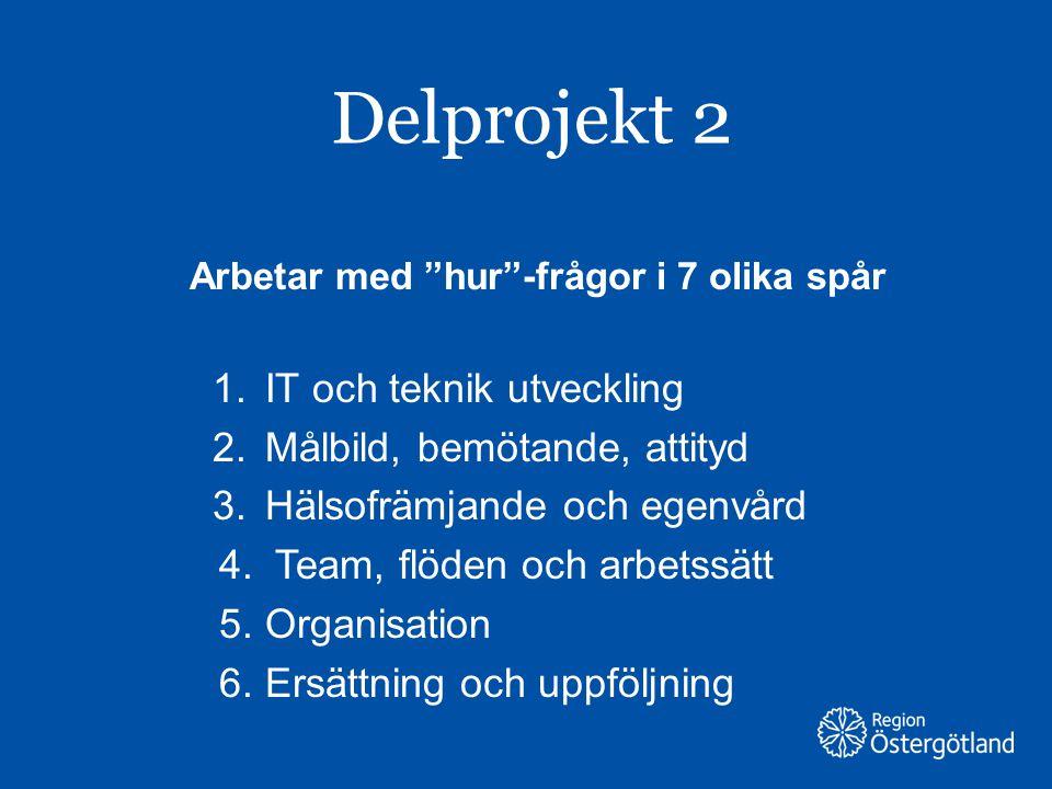 """Region Östergötland Delprojekt 2 Arbetar med """"hur""""-frågor i 7 olika spår 1.IT och teknik utveckling 2.Målbild, bemötande, attityd 3.Hälsofrämjande och"""