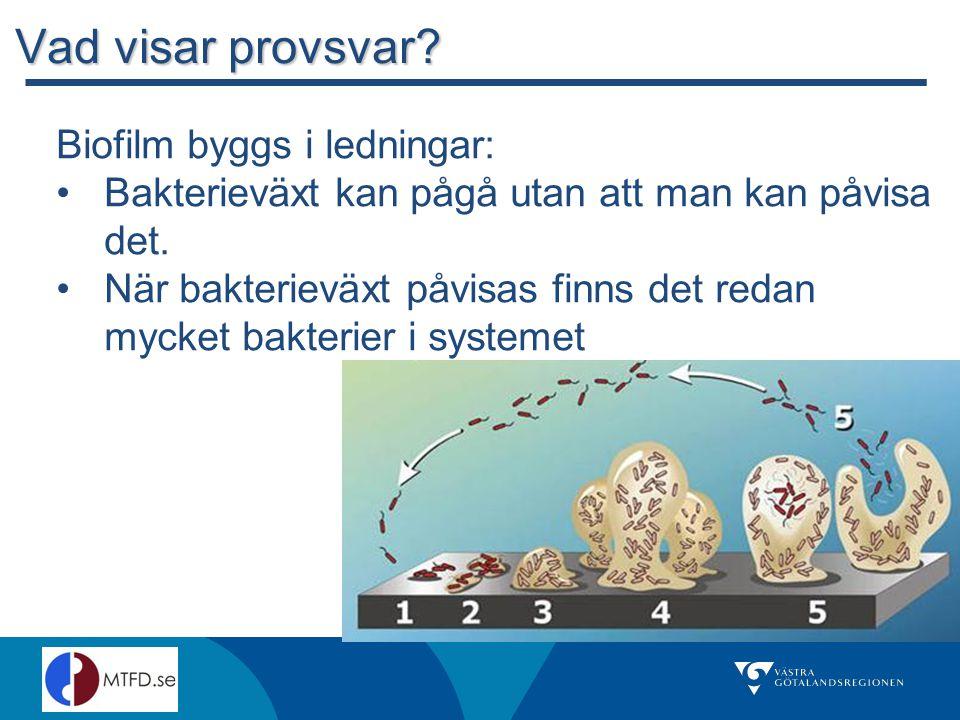 Vad visar provsvar.Biofilm byggs i ledningar: Bakterieväxt kan pågå utan att man kan påvisa det.