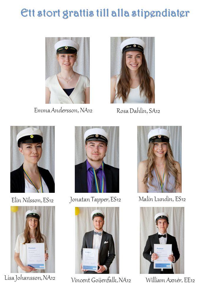 Sanna Eriksson, VO12 Robert Wetterberg, ES12 Jordanos Yemane Teclemariam, SA12 Elin Gustafsson, HA12 Linn Granath, HA12 Maja Isaksson, HA12 Henrik Johans Lövström, FT12 Emma Wallin, SA12 Vanessa Netwiwat, RL12