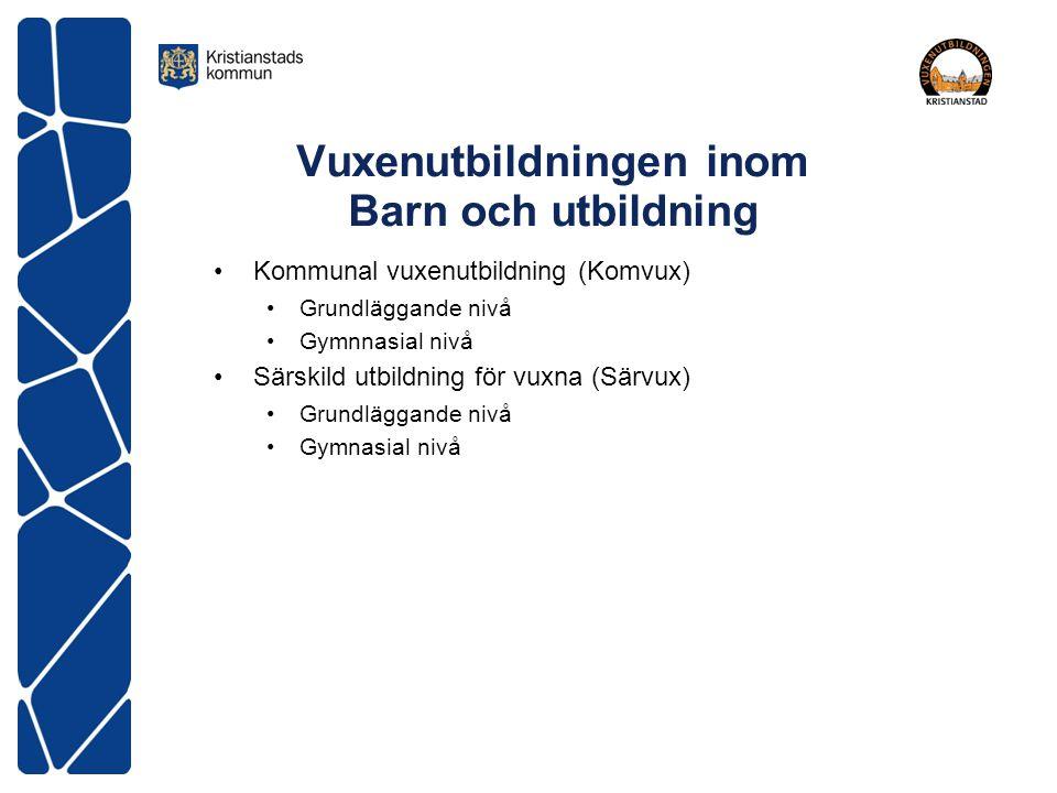 Vuxenutbildningen inom Barn och utbildning Kommunal vuxenutbildning (Komvux) Grundläggande nivå Gymnnasial nivå Särskild utbildning för vuxna (Särvux)