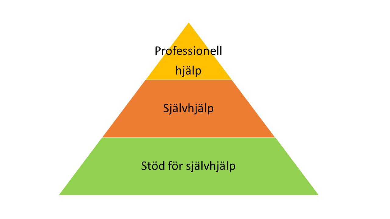 Professionell hjälp Självhjälp Stöd för självhjälp