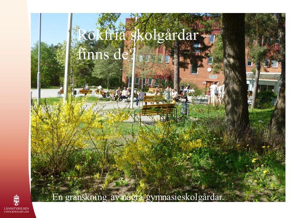 Rökfria skolgårdar – finns de En granskning av några gymnasieskolgårdar.
