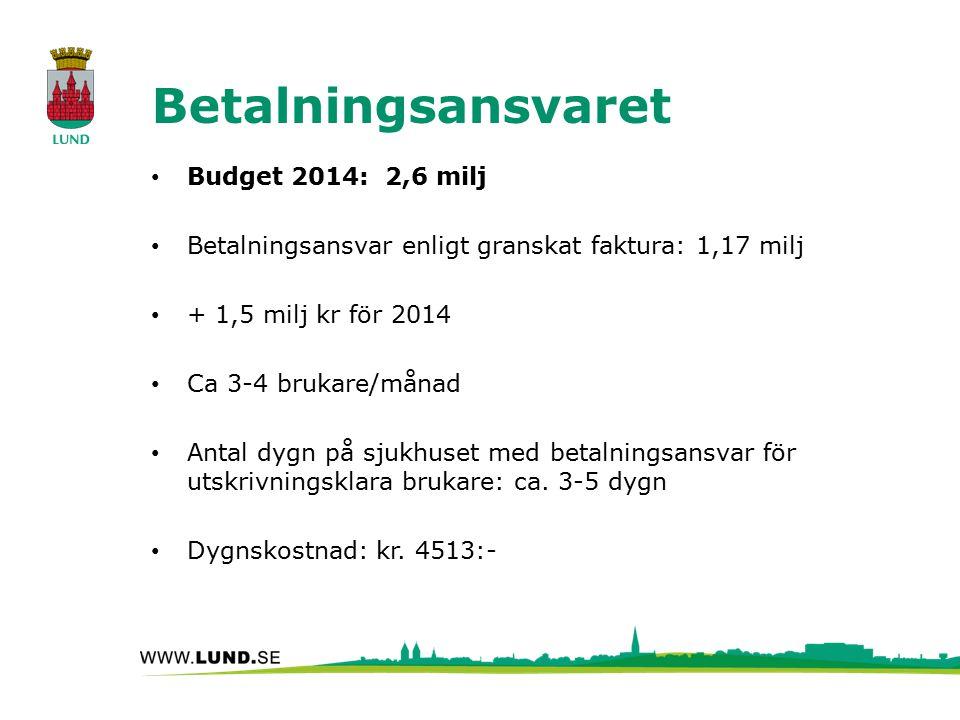 Betalningsansvaret Budget 2014: 2,6 milj Betalningsansvar enligt granskat faktura: 1,17 milj + 1,5 milj kr för 2014 Ca 3-4 brukare/månad Antal dygn på sjukhuset med betalningsansvar för utskrivningsklara brukare: ca.