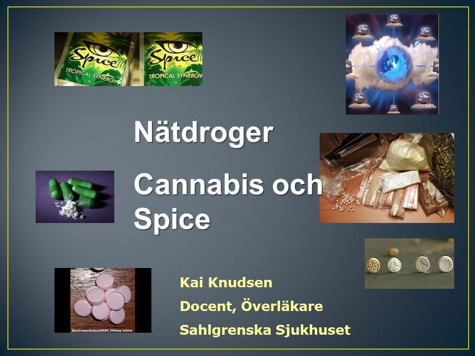 Kai Knudsen Docent, Överläkare Sahlgrenska Sjukhuset Nätdroger Cannabis och Spice