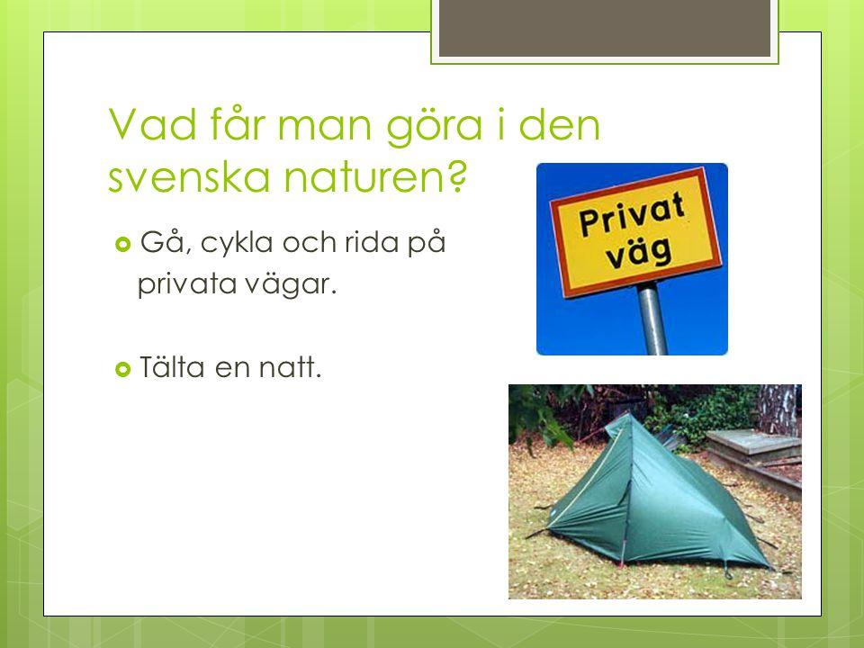 Vad får man göra i den svenska naturen?  Gå, cykla och rida på privata vägar.  Tälta en natt.