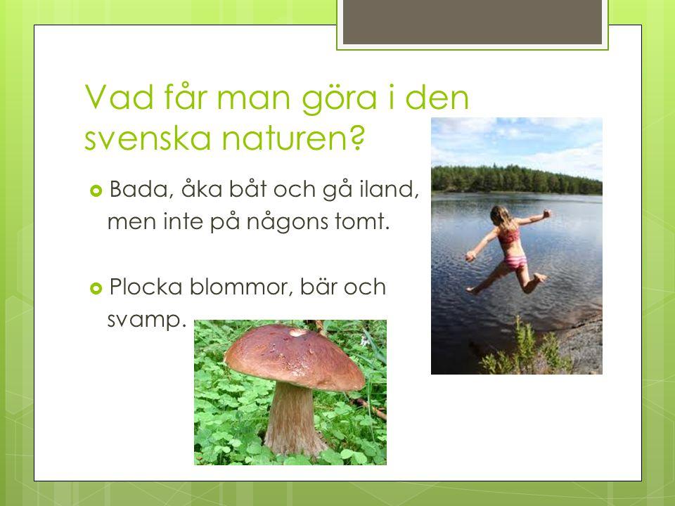 Vad får man göra i den svenska naturen?  Bada, åka båt och gå iland, men inte på någons tomt.  Plocka blommor, bär och svamp.