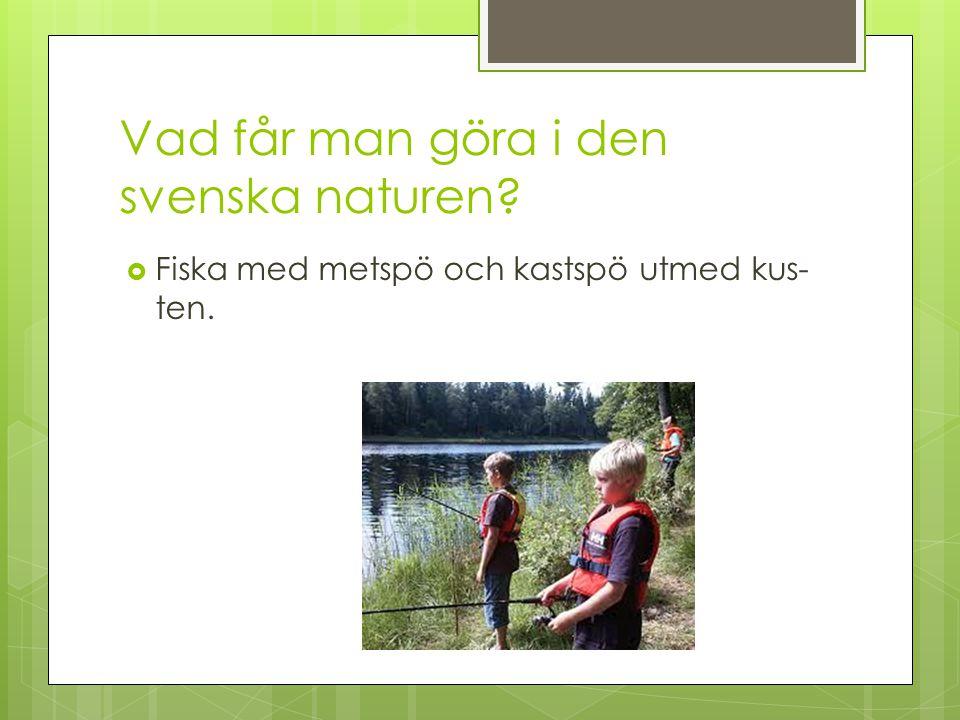 Vad får man göra i den svenska naturen?  Fiska med metspö och kastspö utmed kus ten.