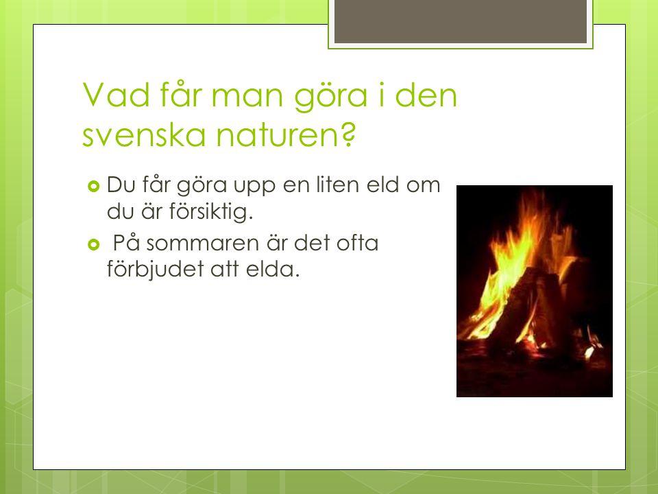 Vad får man göra i den svenska naturen?  Du får göra upp en liten eld om du är försiktig.  På sommaren är det ofta förbjudet att elda.