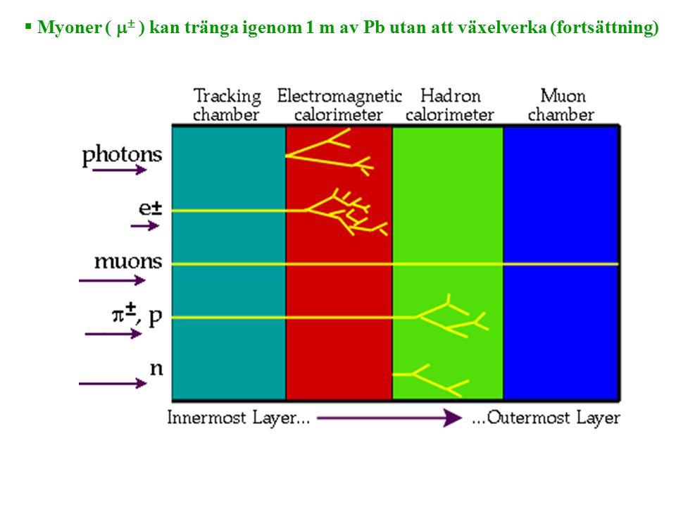  Myoner (   ) kan tränga igenom 1 m av Pb utan att växelverka (fortsättning)