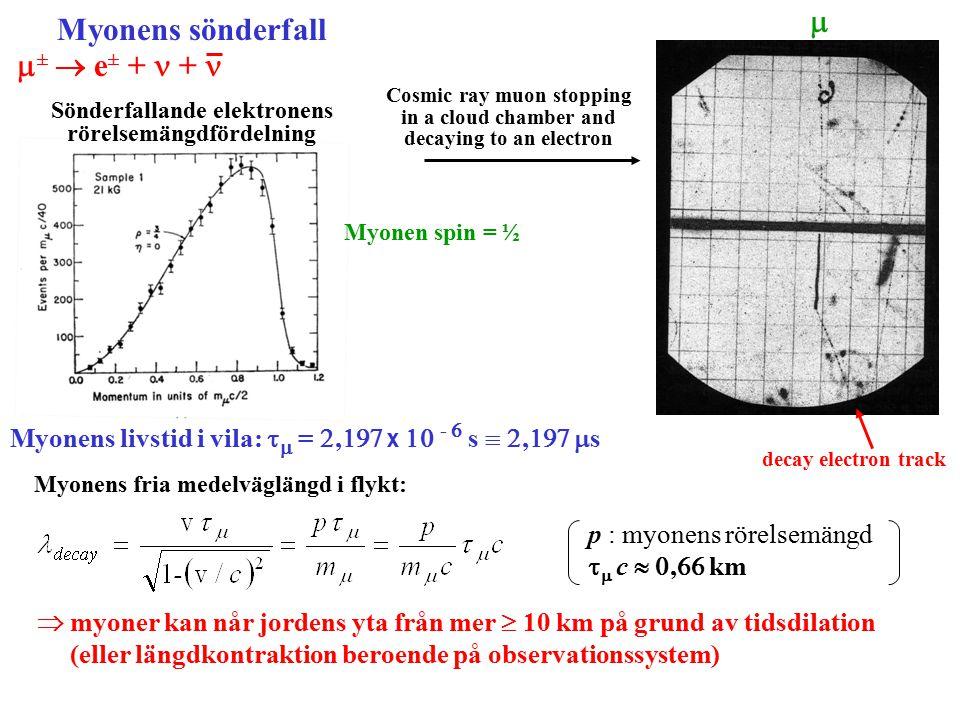 Myonens sönderfall  ±  e ± + + Sönderfallande elektronens rörelsemängdfördelning Cosmic ray muon stopping in a cloud chamber and decaying to an electron  decay electron track Myonens livstid i vila:   = ,  x  -  s  ,   s Myonens fria medelväglängd i flykt:  myoner kan når jordens yta från mer  10 km på grund av tidsdilation (eller längdkontraktion beroende på observationssystem) p : myonens rörelsemängd    c  ,  km Myonen spin = ½