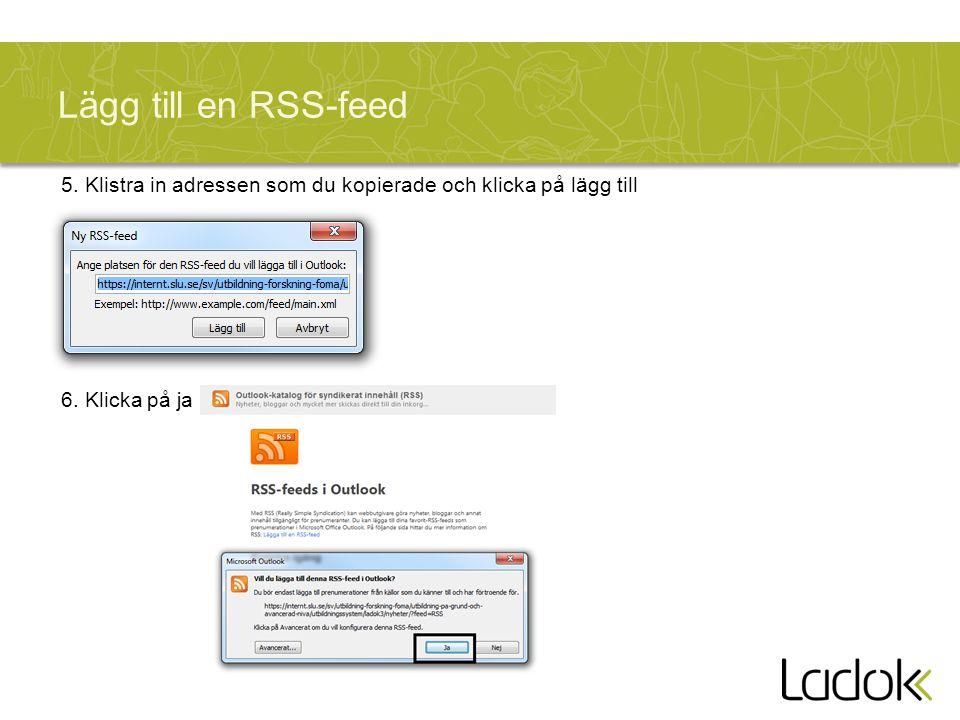 Lägg till en RSS-feed 5. Klistra in adressen som du kopierade och klicka på lägg till 6. Klicka på ja