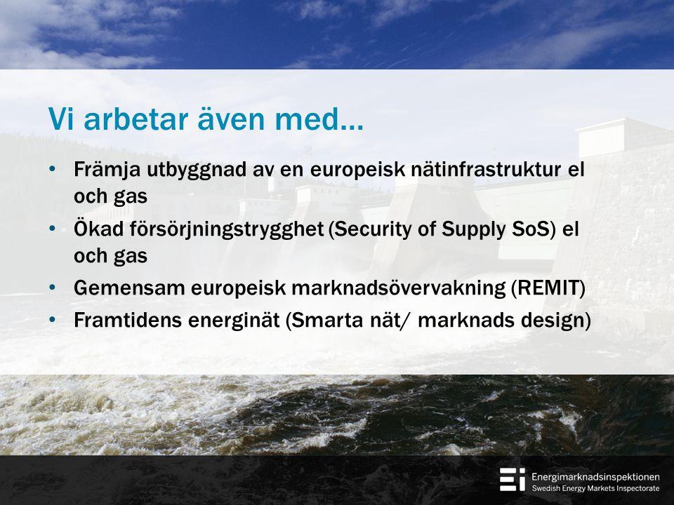 Vi arbetar även med… Främja utbyggnad av en europeisk nätinfrastruktur el och gas Ökad försörjningstrygghet (Security of Supply SoS) el och gas Gemensam europeisk marknadsövervakning (REMIT) Framtidens energinät (Smarta nät/ marknads design)