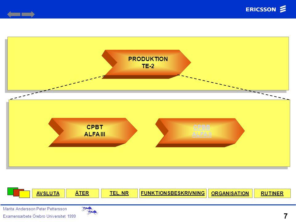 CP LEDNINGSSYSTEM ISO 14001 MILJÖLEDNINGSSYSTEM DIREKTIV Ex.