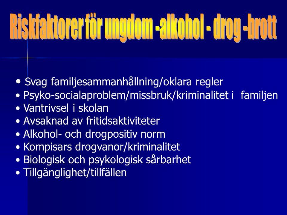 Svag familjesammanhållning/oklara regler Psyko-socialaproblem/missbruk/kriminalitet i familjen Vantrivsel i skolan Avsaknad av fritidsaktiviteter Alkohol- och drogpositiv norm Kompisars drogvanor/kriminalitet Biologisk och psykologisk sårbarhet Tillgänglighet/tillfällen