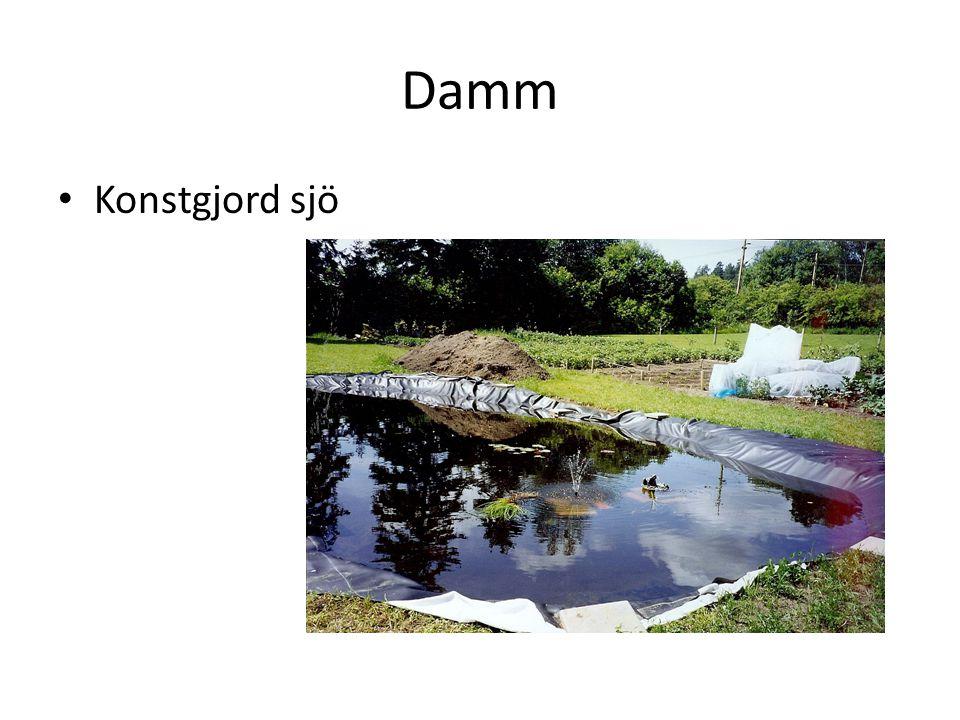 Damm Konstgjord sjö