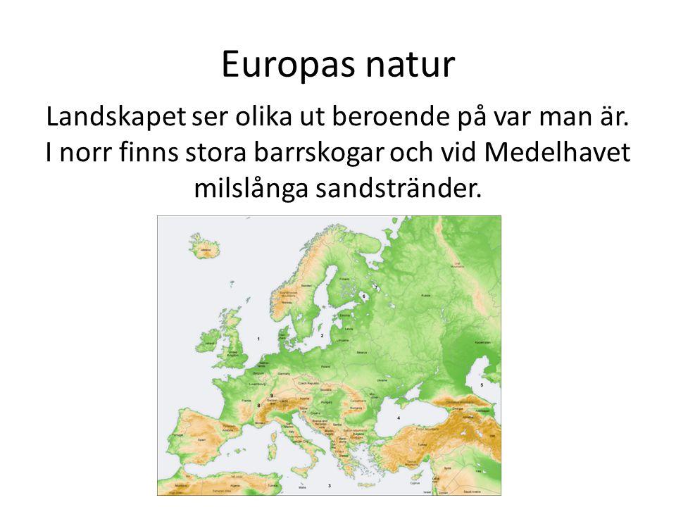 Europas natur Landskapet ser olika ut beroende på var man är. I norr finns stora barrskogar och vid Medelhavet milslånga sandstränder.