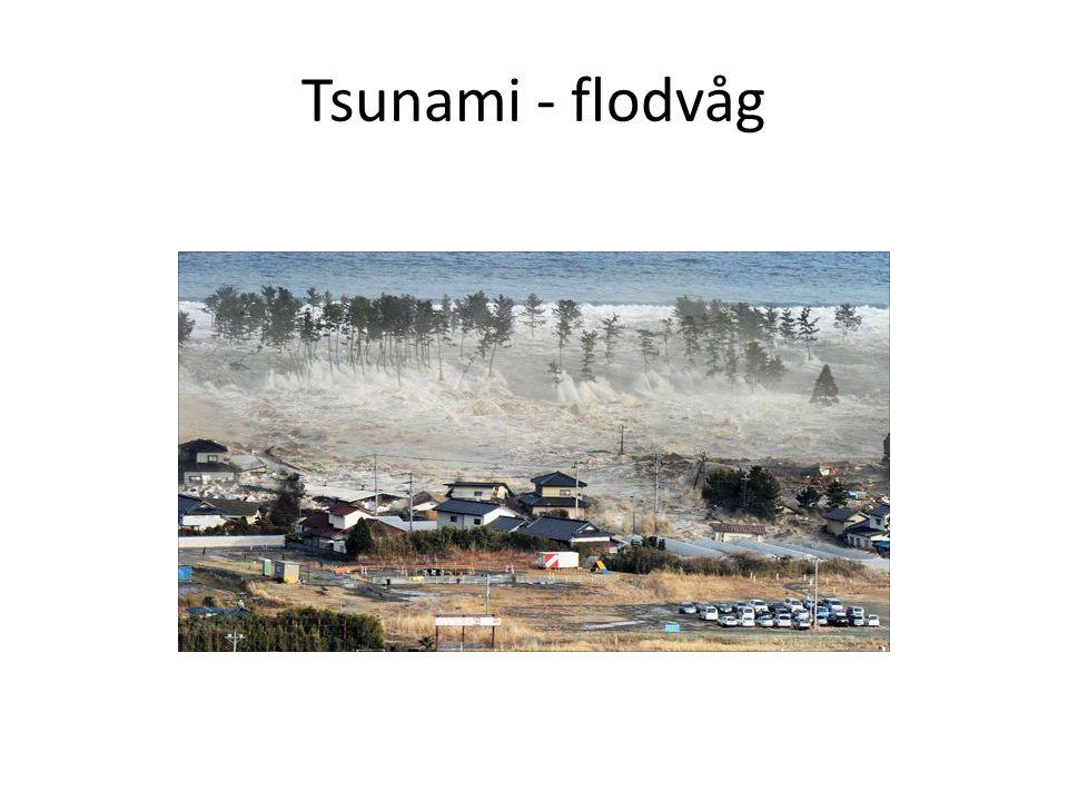 Tsunami - flodvåg
