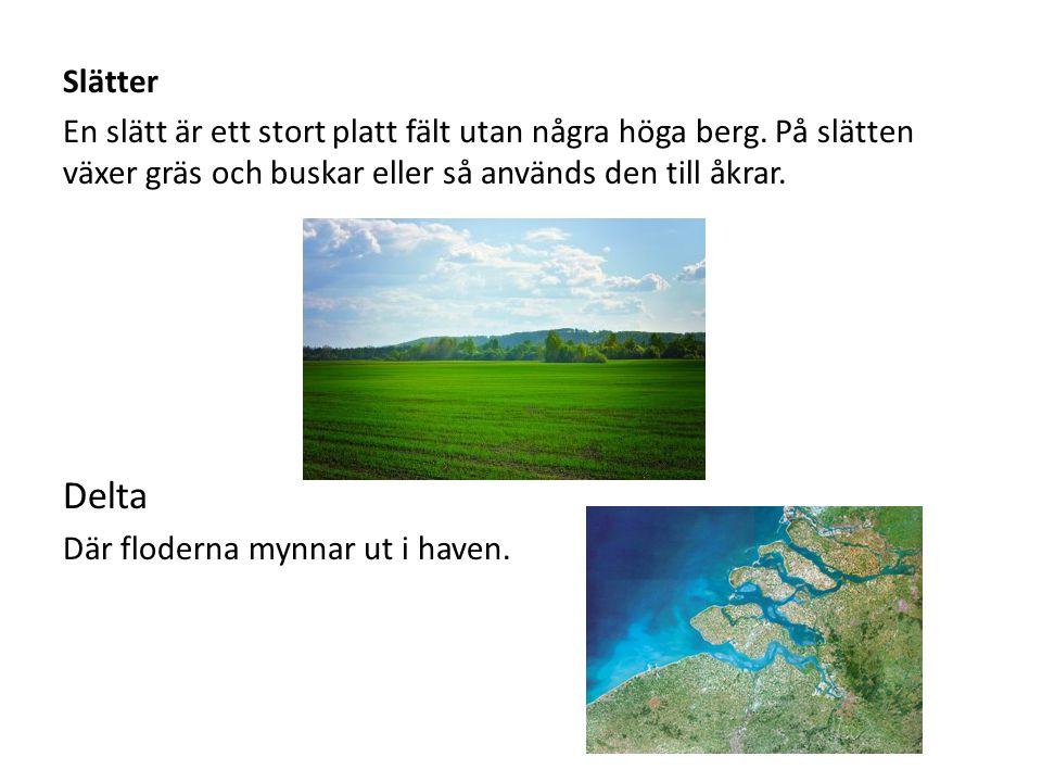 Slätter En slätt är ett stort platt fält utan några höga berg. På slätten växer gräs och buskar eller så används den till åkrar. Delta Där floderna my