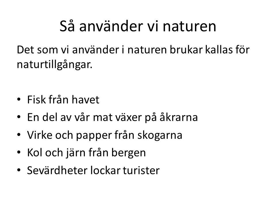 Så använder vi naturen Det som vi använder i naturen brukar kallas för naturtillgångar. Fisk från havet En del av vår mat växer på åkrarna Virke och p