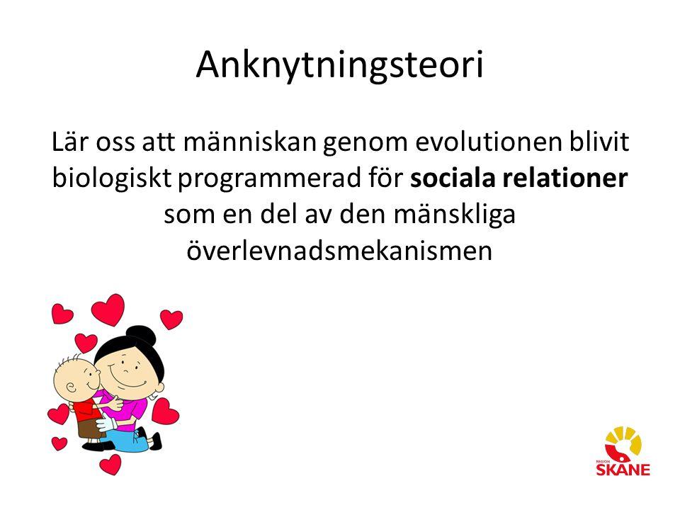 Lär oss att människan genom evolutionen blivit biologiskt programmerad för sociala relationer som en del av den mänskliga överlevnadsmekanismen Anknyt