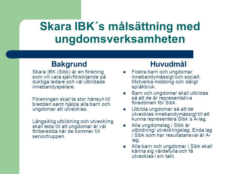 Skara IBK´s målsättning med ungdomsverksamheten Bakgrund Skara IBK (Sibk) är en förening som vill vara självförsörjande på duktiga ledare och väl utbildade innebandyspelare.
