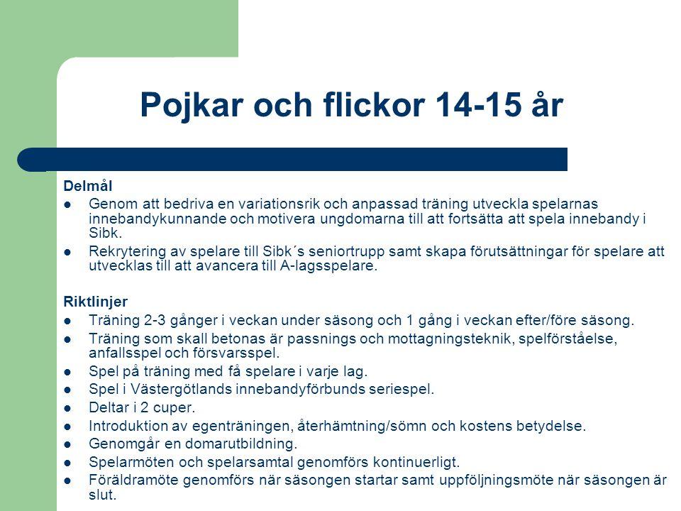 Pojkar och flickor 14-15 år Delmål Genom att bedriva en variationsrik och anpassad träning utveckla spelarnas innebandykunnande och motivera ungdomarna till att fortsätta att spela innebandy i Sibk.