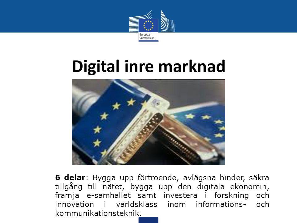 Digital inre marknad 6 delar: Bygga upp förtroende, avlägsna hinder, säkra tillgång till nätet, bygga upp den digitala ekonomin, främja e-samhället sa