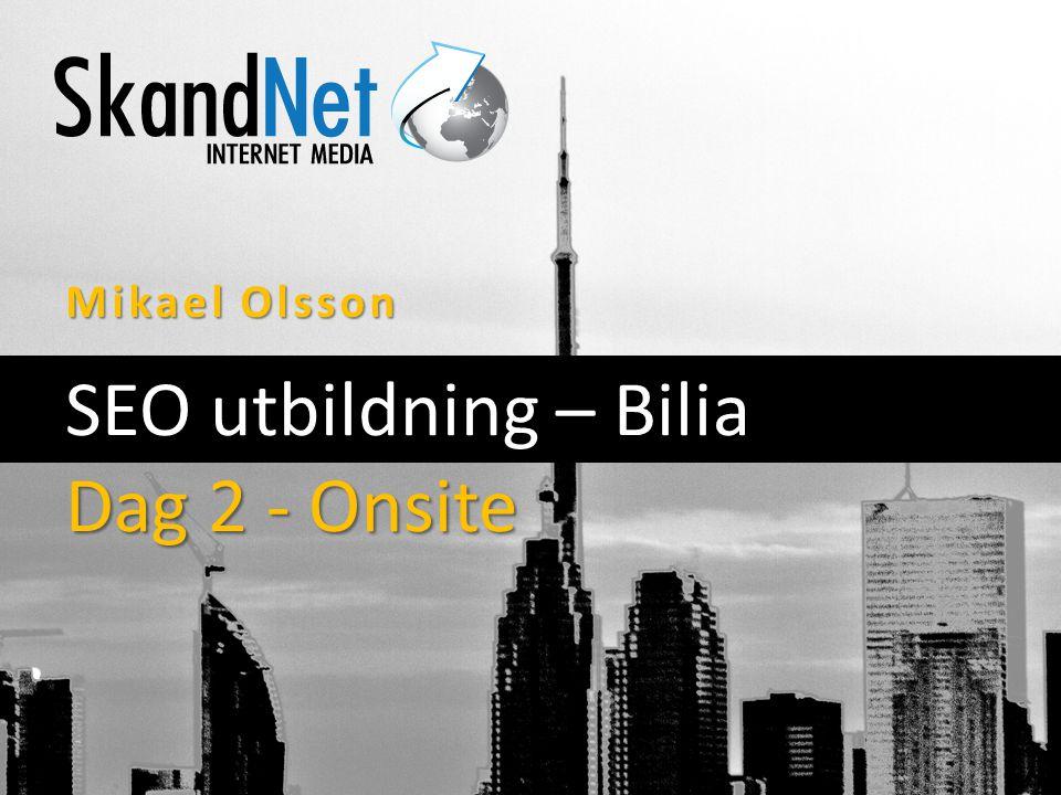 Mikael Olsson SEO utbildning – Bilia Dag 2 - Onsite