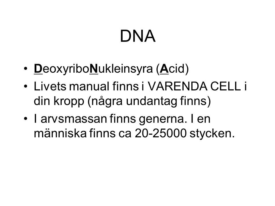 DNA DeoxyriboNukleinsyra (Acid) Livets manual finns i VARENDA CELL i din kropp (några undantag finns) I arvsmassan finns generna. I en människa finns
