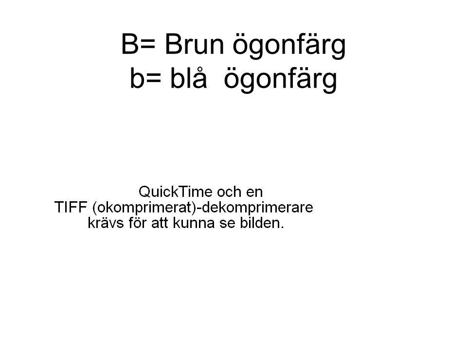 B= Brun ögonfärg b= blå ögonfärg