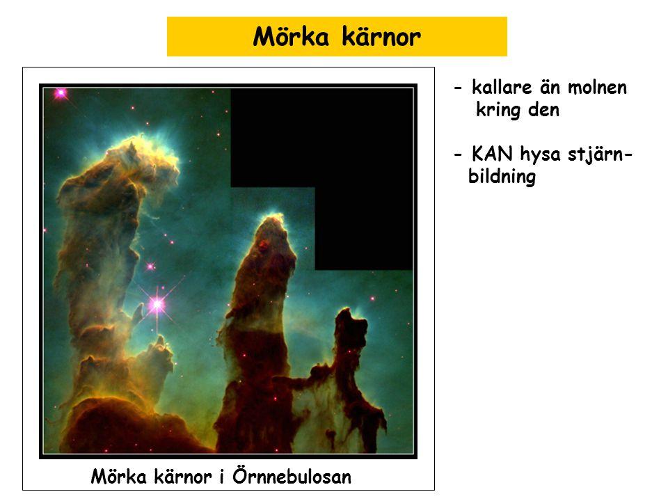Mörka kärnor Mörka kärnor i Örnnebulosan - kallare än molnen kring den - KAN hysa stjärn- bildning