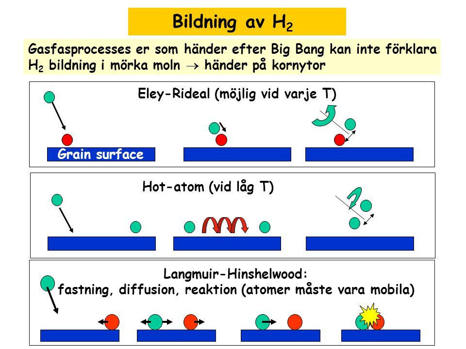 Bildning av H 2 Gasfasprocesses er som händer efter Big Bang kan inte förklara H 2 bildning i mörka moln  händer på kornytor Grain surface Eley-Rideal (möjlig vid varje T) Hot-atom (vid låg T) Langmuir-Hinshelwood: fastning, diffusion, reaktion (atomer måste vara mobila)