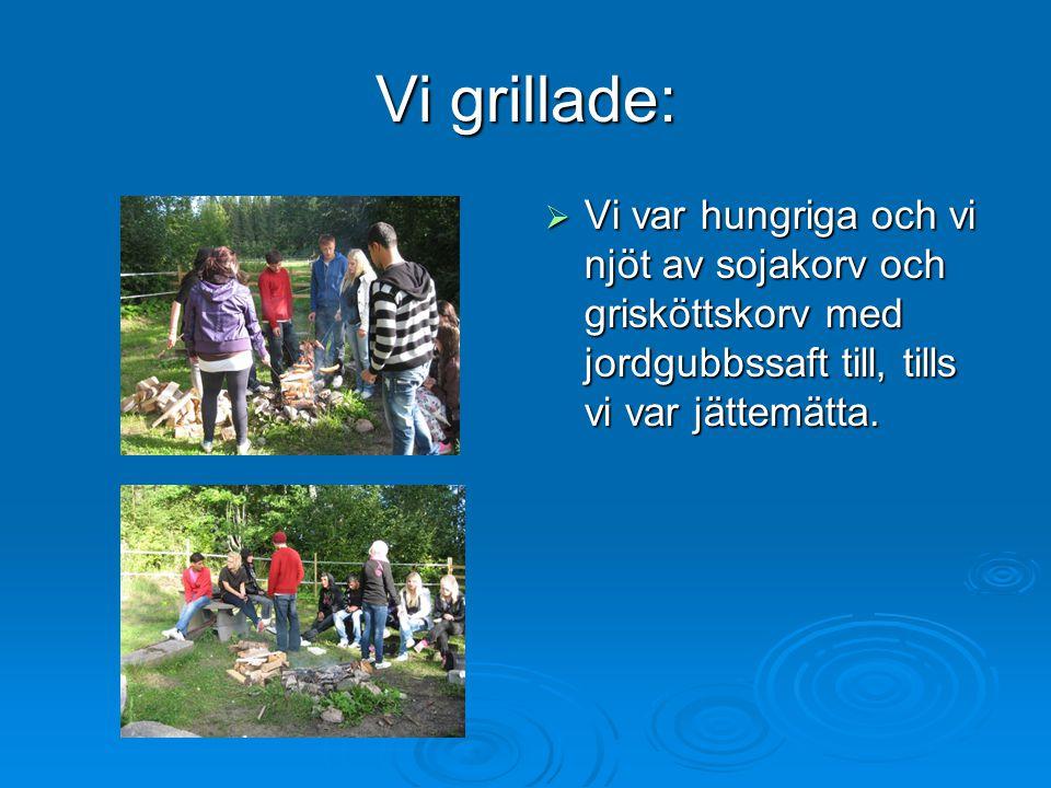 Vi grillade: VVVVi var hungriga och vi njöt av sojakorv och grisköttskorv med jordgubbssaft till, tills vi var jättemätta.