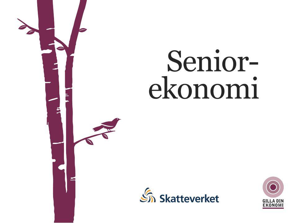 Senior- ekonomi