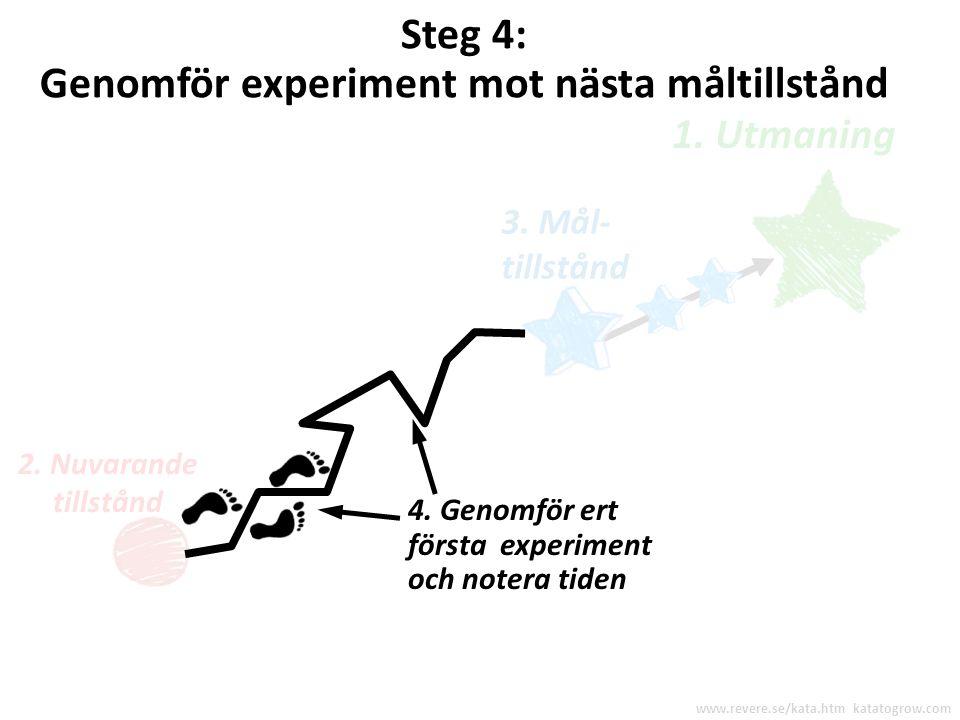 Vad är ert första experiment ? www.revere.se/kata.htm katatogrow.com