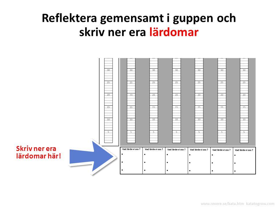 Reflektera över varje experiment Efter varje runda kommer vi att ställa dessa REFLEKTERANDE FRÅGOR www.revere.se/kata.htm katatogrow.com