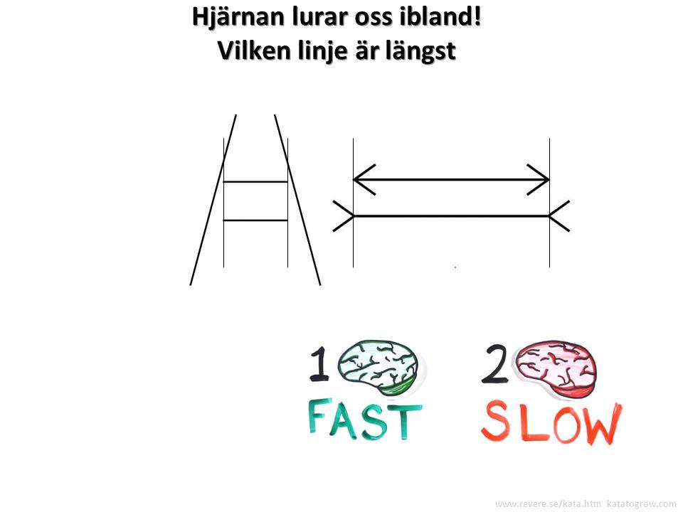 Vetenskapligt tänkande Vad vi förväntar oss skall hända Vad som verkligen händer Lärande Låt oss försöka och se ! www.revere.se/kata.htm katatogrow.co