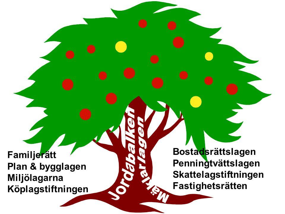 Bostadsrättslagen Penningtvättslagen Skattelagstiftningen Fastighetsrätten Familjerätt Plan & bygglagen Miljölagarna Köplagstiftningen