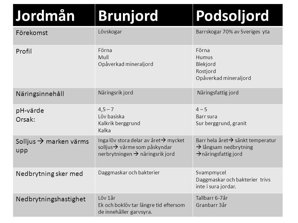 JordmånBrunjordPodsoljord Förekomst LövskogarBarrskogar 70% av Sveriges yta Profil Förna Mull Opåverkad mineraljord Förna Humus Blekjord Rostjord Opåv