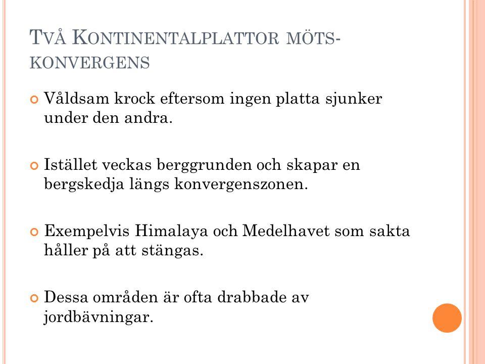 T VÅ K ONTINENTALPLATTOR MÖTS - KONVERGENS Våldsam krock eftersom ingen platta sjunker under den andra.