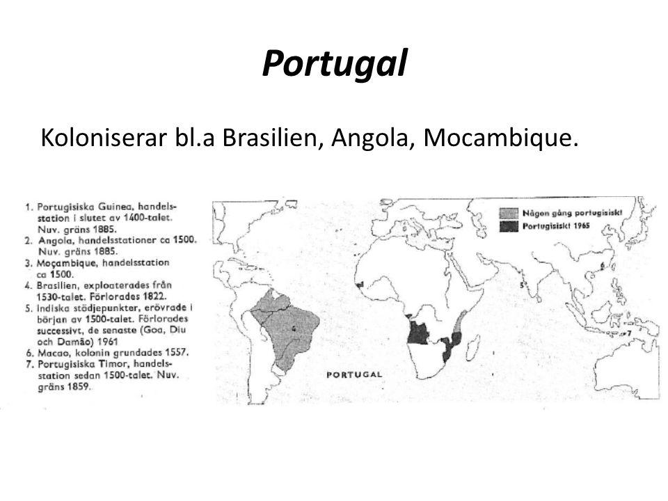 Holland Koloniserar bl.a östra USA, Guyana, Indonesien.