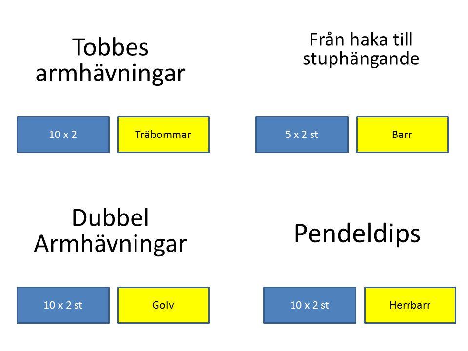 Tobbes armhävningar Träbommar10 x 2 Från haka till stuphängande Pendeldips Herrbarr10 x 2 st Dubbel Armhävningar 10 x 2 stGolv Barr5 x 2 st