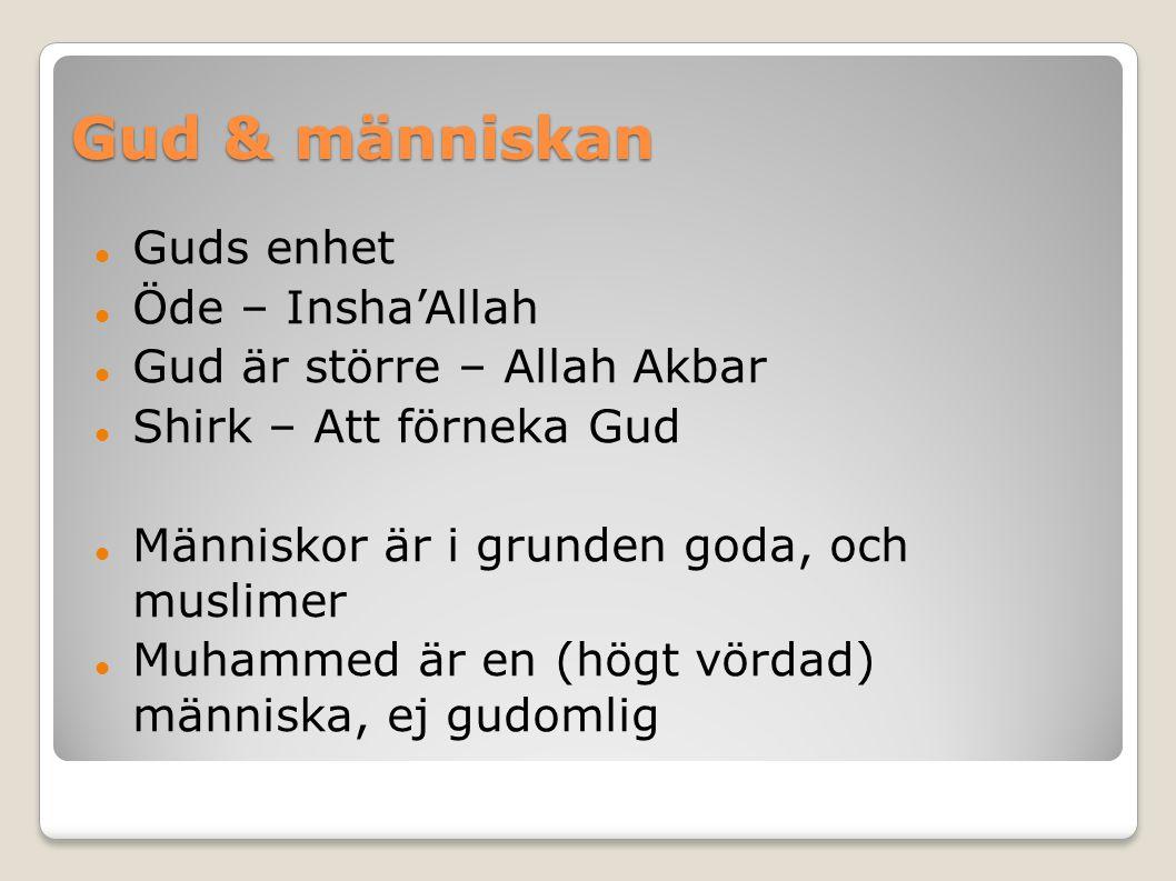 Gud & människan Guds enhet Öde – Insha'Allah Gud är större – Allah Akbar Shirk – Att förneka Gud Människor är i grunden goda, och muslimer Muhammed är en (högt vördad) människa, ej gudomlig
