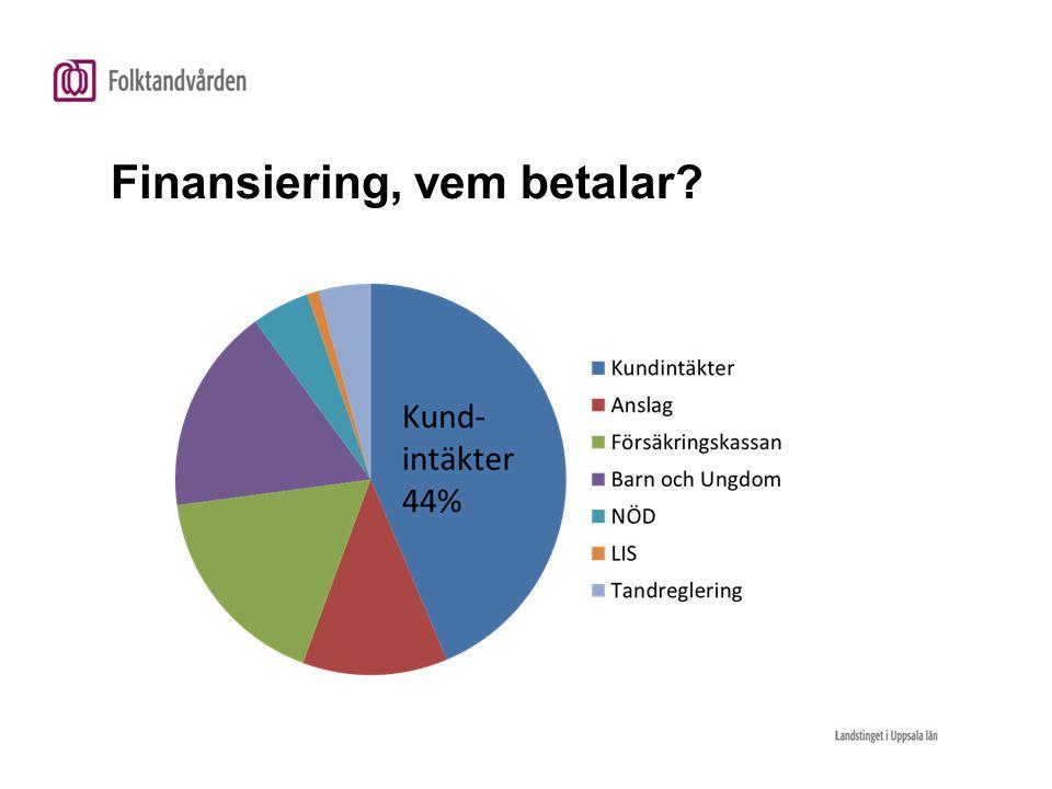 Finansiering, vem betalar