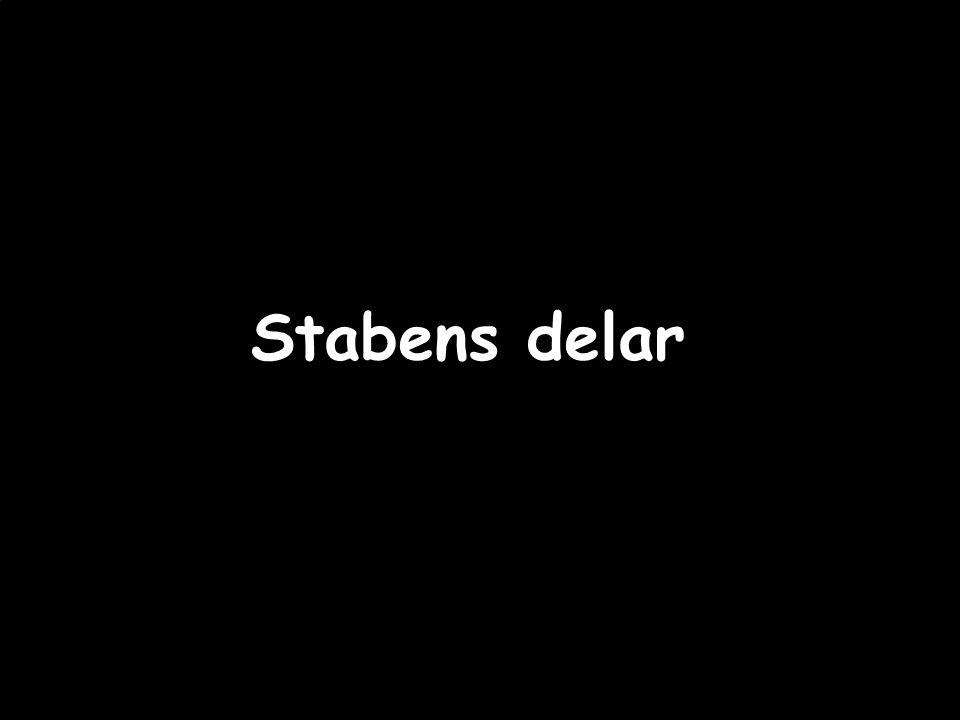 Regionalt råd – Hooks Herrgård 2012-01-19--20 Stabens delar